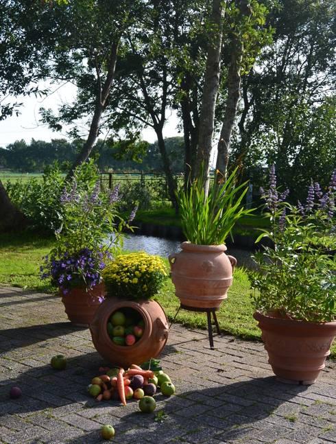 Natuurlijke tuin: mediterraan Balkon, veranda & terras door Terrecotte Benelux