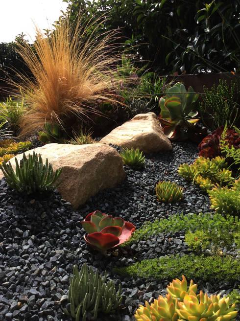 Simbiosi Estudi의  정원