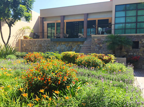 Jardin y casa: Jardines de estilo moderno por Terra