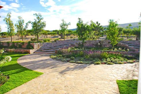 Jardin de Acceso : Jardines de estilo clásico por Terra
