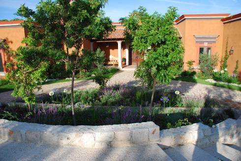 Vista Posterior Jardin de Acceso : Jardines de estilo clásico por Terra