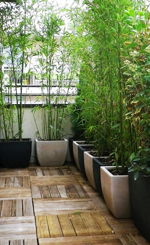 Projekty,  Ogród zaprojektowane przez Skéa Designer