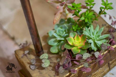 Detalle: Plantas Libro: Hogar de estilo  por Mancuspias