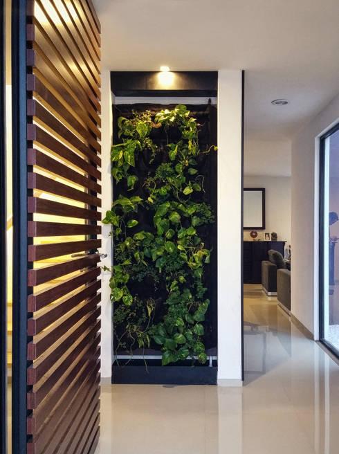 MURO VERDE COMO REMATE VISUAL: Pasillos y recibidores de estilo  por Región 4 Arquitectura