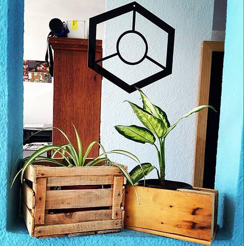 Jardín de estilo  por Punto Libre Arquitectura