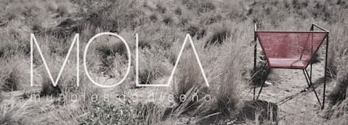 SILLÓN ARAÑA UNIVERSAL : Arte de estilo  por MOLA