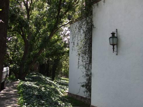 Casa Zertuche- El Saltillo: Casas de estilo moderno por Moya-Arquitectos