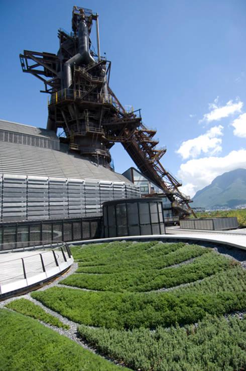 Detalle de techo verde y Horno: Museos de estilo  por HARARI LANDSCAPE