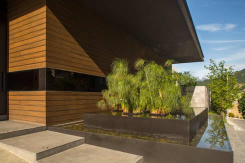 RESIDENCIA JAGUARUNDI: Jardines de estilo moderno por HARARI LANDSCAPE