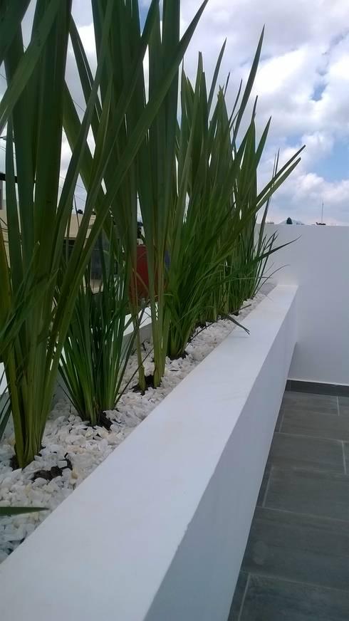 Jardineras casa zamora: Balcones y terrazas de estilo moderno por Bamboo design & garden