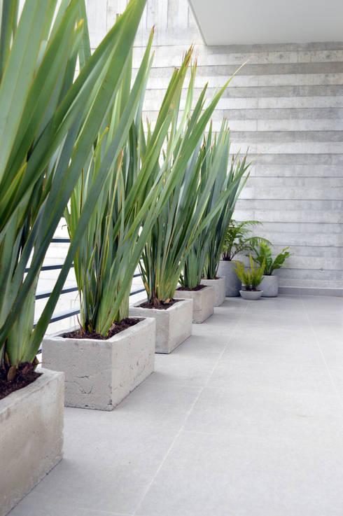 Projekty,  Gospodarstwo domowe zaprojektowane przez EN.CONCRETO