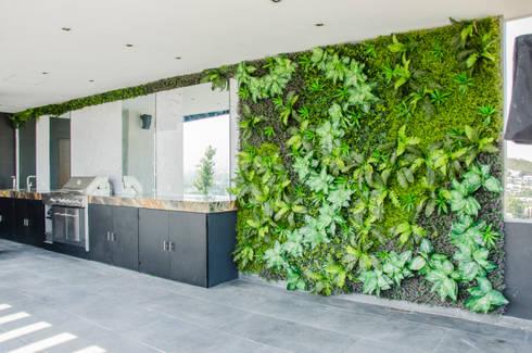 Jardines Verticales: Jardines de estilo moderno por HUICHOL