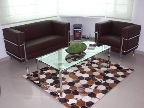 Salones y comedores: Yates y jets de estilo moderno por Paola Hernandez Studio Comfort Design