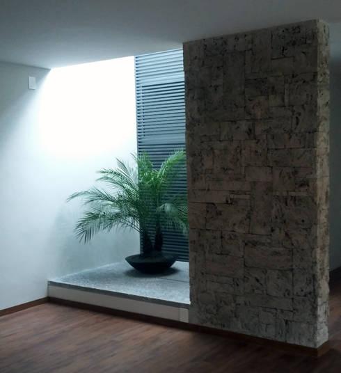 Patio: Jardines de estilo moderno por H + M Arquitectos