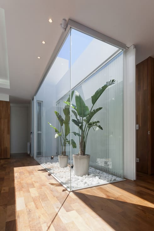 Casa C Puerto Roldan: Terrazas de estilo  por VISMARACORSI ARQUITECTOS
