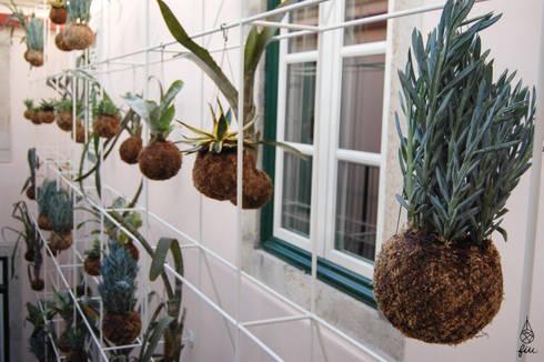 Instalação de plantas fiu suspensas no My Story Hostel: Jardins modernos por fiu jardins, lda.