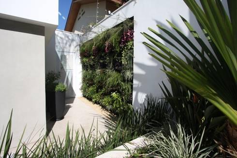 Painel verde : Jardins tropicais por HZ Paisagismo
