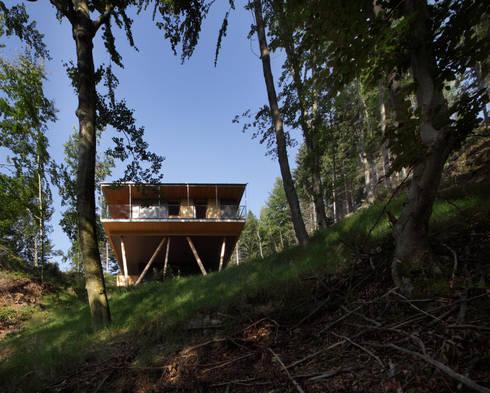Haus im Bergwald von U1 architektur homify