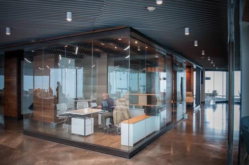OFICINAS CORPORATIVAS SPGG, MX.: Estudios y oficinas de estilo moderno por LOOP Arquitectura Integral