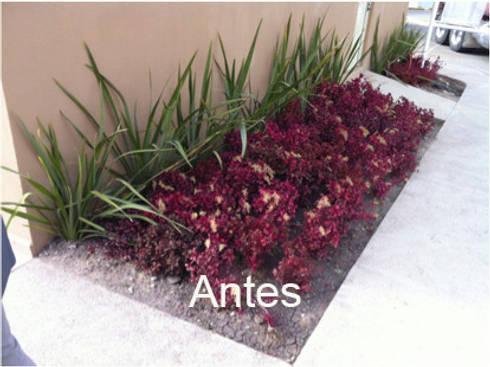 Caseta ventas antes de ser intervenido: Jardines de estilo mediterraneo por Hábitas