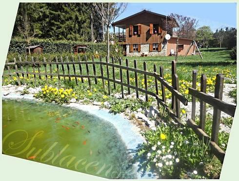 Altipiani di arcinazzo villa con pianeggiante e ampio for Pesci laghetto vendita