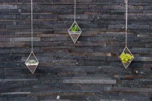 Terrarios Lorenza: Casas de estilo moderno por Fractales