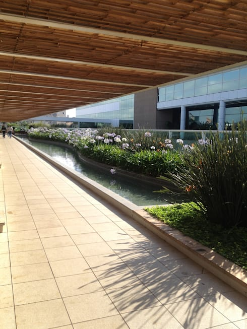 Revestimento de Pérgola Shopping Uberlândia : Jardins modernos por BAMBU CARBONO ZERO
