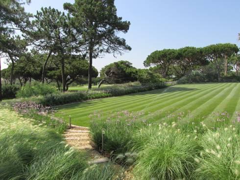 Algarve Coastal Garden: Jardins tropicais por Jardim Vista