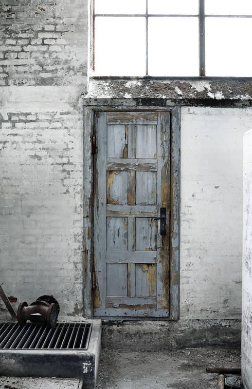 Окна и двери в . Автор – Muubs
