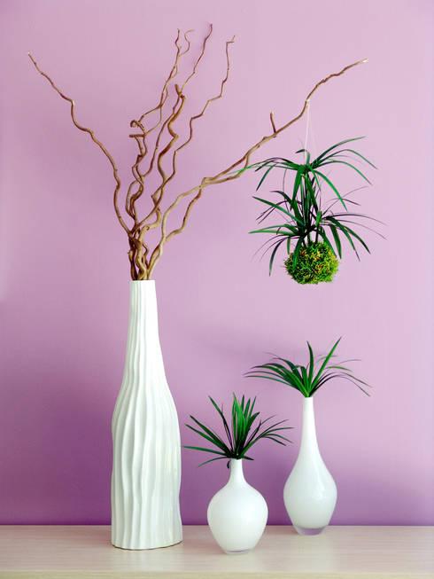 vegetal: Bureau de style  par Adventive