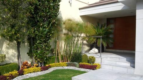 Diseno de Interiores: Jardines de estilo moderno por Diseno de interiores y asesoria