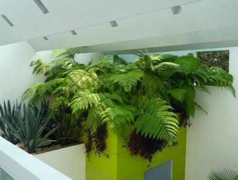Casa Parral 62: Terrazas de estilo  por simbiosis ARQUITECTOS