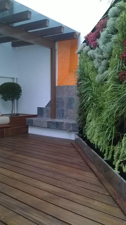 Roof Gardens: Terrazas de estilo  por F.arquitectos