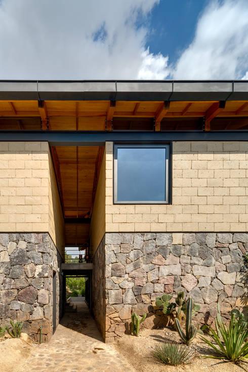 Patio de Maniobras / Isla de Cactaseas: Casas de estilo moderno por TAAR / TALLER DE ARQUITECTURA DE ALTO RENDIMIENTO