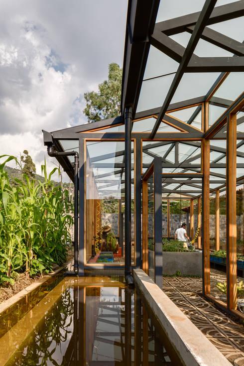 Jardines de invierno de estilo moderno por TAAR / TALLER DE ARQUITECTURA DE ALTO RENDIMIENTO