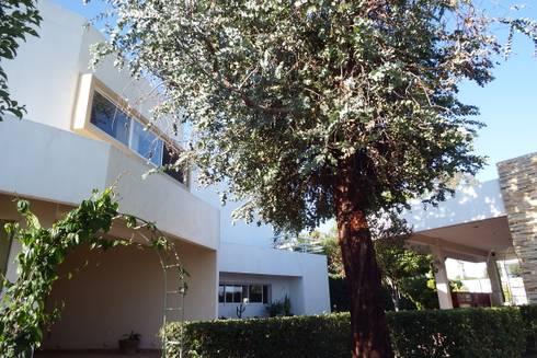 Casa  FR: Casas de estilo minimalista por Flores Rojas Arquitectura