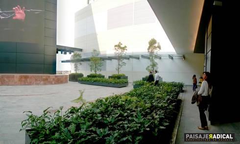 Terraza: Jardines de estilo moderno por Paisaje Radical