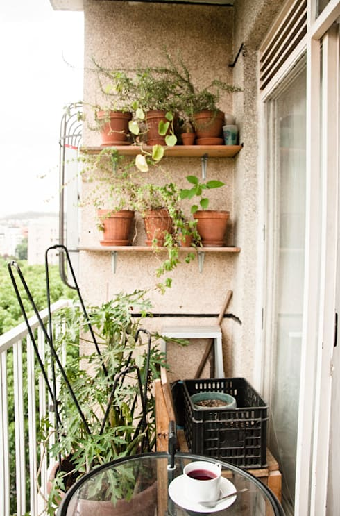 Balcón con vegetación: Terrazas de estilo  por PUNCH TAD