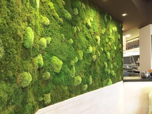 Jardin vertical planta preservada de arquigreen homify for Jardines verticales precios