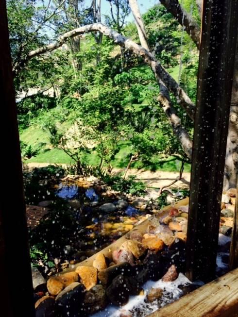 El Descanso Natural Pool: Jardines de estilo topical por BR  ARQUITECTOS