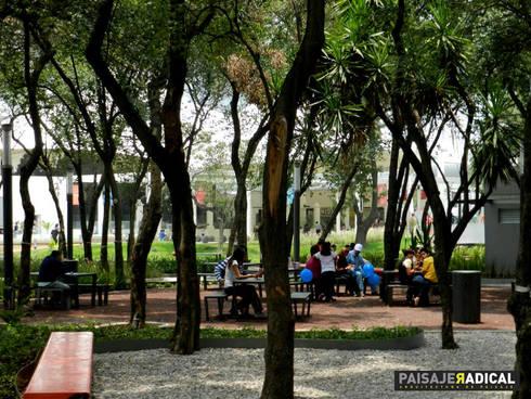 TOWN CENTER: Jardines de estilo moderno por Paisaje Radical