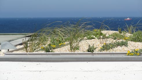 Casa das Algas : Jardins mediterrânicos por Neoturf