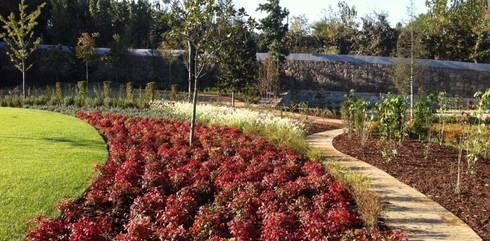 Jardim de habitação particular em Guimarães: Jardins mediterrânicos por Neoturf