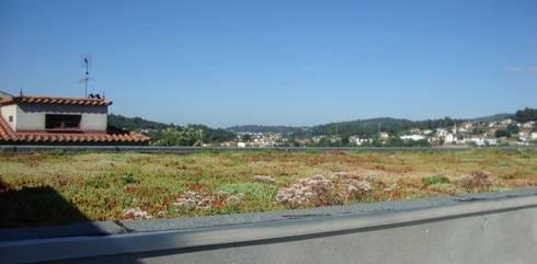Aspeto final da cobertura ajardinada: Jardins modernos por Neoturf