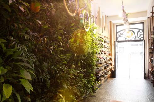 Loja Merrell * Chiado (Rua do Ouro nº277 - Lisboa): Lojas e espaços comerciais  por LC Vertical Gardens