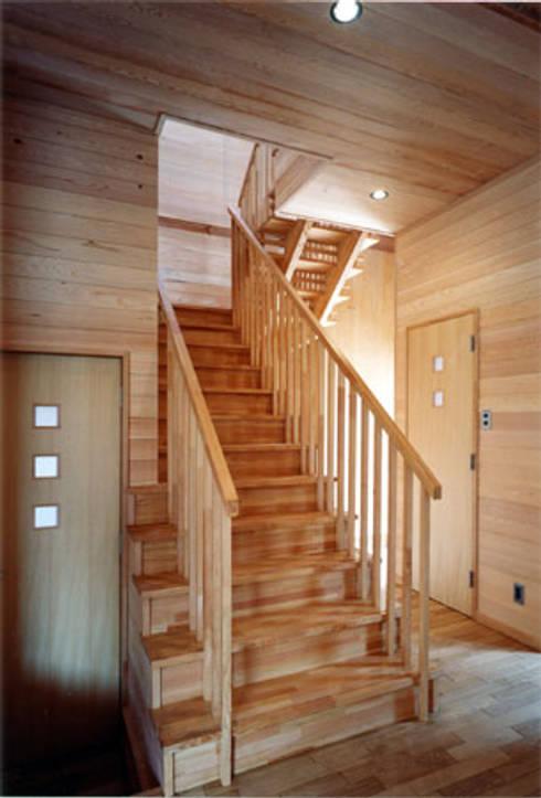 【階段室1階】 : 安達文宏建築設計事務所が手掛けた廊下 & 玄関です。