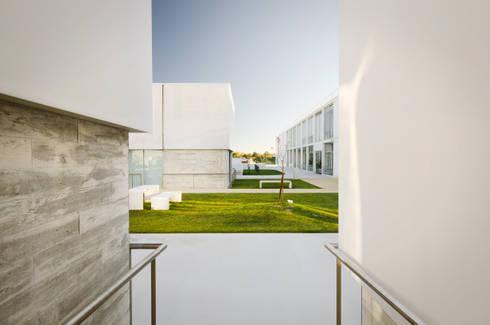 Vista exterior: Casas mediterrânicas por guedes cruz arquitectos