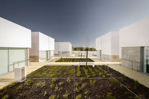 Vista Exterior: Jardins mediterrânicos por guedes cruz arquitectos