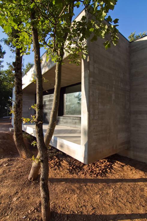 Casa en el bosque de comas pont arquitectes slp homify for Casa minimalista bosque