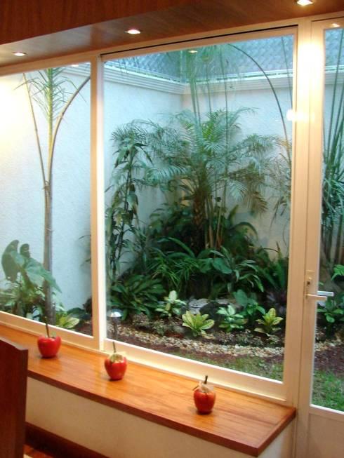 Valle Anahuac Animas Xalapa Veracruz: Jardines de estilo moderno por CouturierStudio